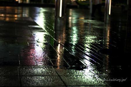雨の公園 NEX-5 FD50 F1.4