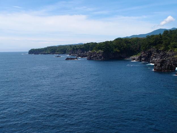 写真: 城ヶ崎海岸