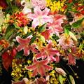 Photos: 生け花