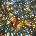 写真: クリスマスかざり