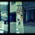写真: img953-003