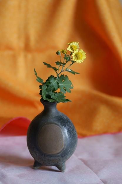 備前焼と菊