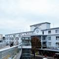 写真: クマモン駅