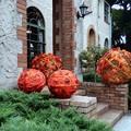 Photos: Orange ball
