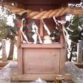 Photos: 初詣二発目。白山神社(二子...