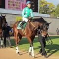 Photos: ベルルミエールと川島信二騎手