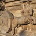 Photos: 山車の跳ね馬~ヒンドゥー彫刻  Prancing horse
