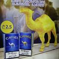 写真: 所変われば~ジョージア Camel pack