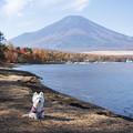 写真: 富士山と一緒