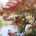 写真: 小さなダム湖