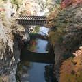 写真: 猿橋から