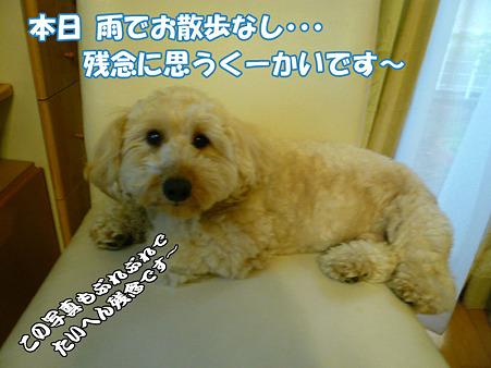 100519 くーかい of the day 1