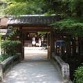 写真: 宇治上神社 2