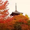 写真: 塔と紅葉