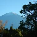 2014/11/14・・・纏めて富士山?01