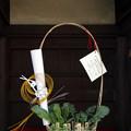 七草籠  21012018