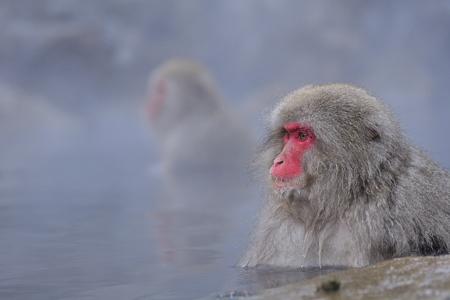 温泉で一息