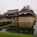 Photos: 広島城へ