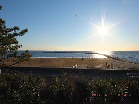 幕張の浜~20150103-01 ヒコーキ