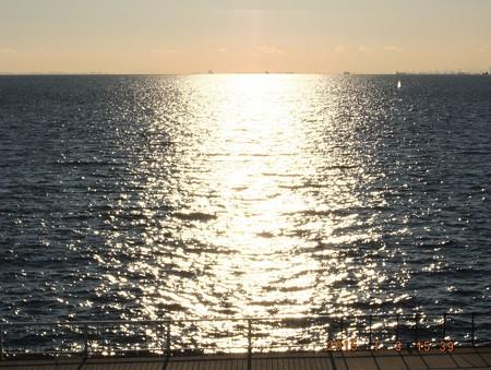 幕張の浜~20150103-03 海に止まるモンシロチョウ