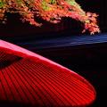 写真: 紅葉シーズン