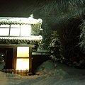 弘前城、大晦日06