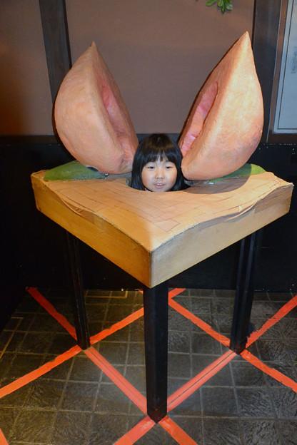 写真: 桃から生まれたマーちゃん