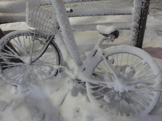 雪まみれ@自転車180122