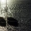 夕暮れの舟