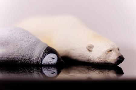2014.11.29 机 つかれた寝 皇帝ペンギンと白熊