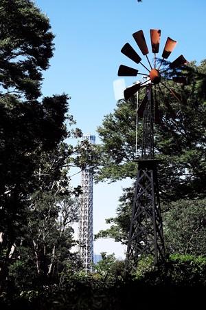 2017.09.29 みなとみらい フランス山からマリンタワー