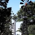Photos: 2017.09.29 みなとみらい フランス山からマリンタワー