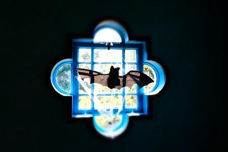 2017.10.30 ベーリック・ホール Halloweenの窓