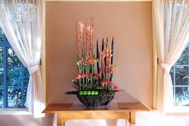 2017.12.12 山手西洋館 ベーリック・ホール 世界のクリスマス オランダ サンルームの花