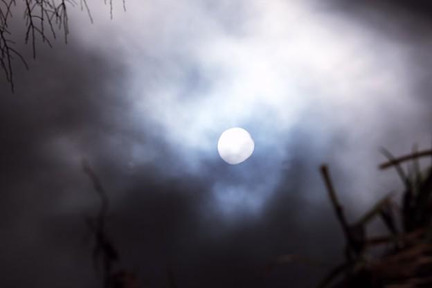 2018.01.18 和泉川 川面の太陽
