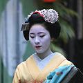 写真: 2010.04.30 祇園 都をどり 舞妓さん