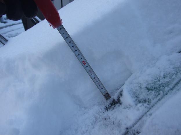 4年ぶりの雪
