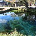 写真: 沸池