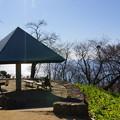 写真: 吾妻山公園-134