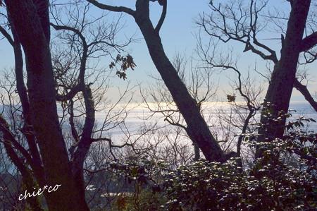 吾妻山公園-156