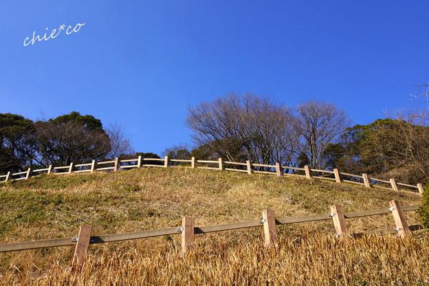 金沢自然公園-251