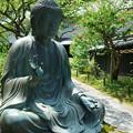 写真: 鎌倉-590