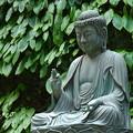 写真: 鎌倉-597