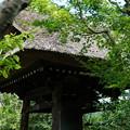 鎌倉-609