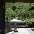 鎌倉-610