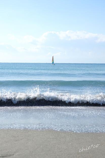 逗子海岸-027