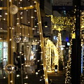 写真: Yokohama-169