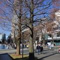 Photos: yokohama-072