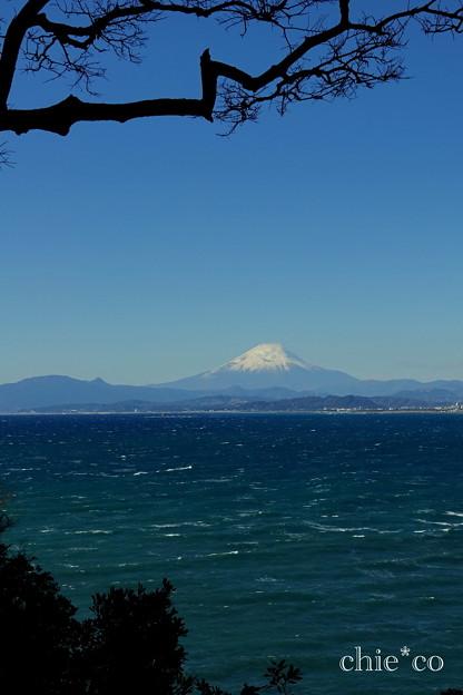 江の島-309
