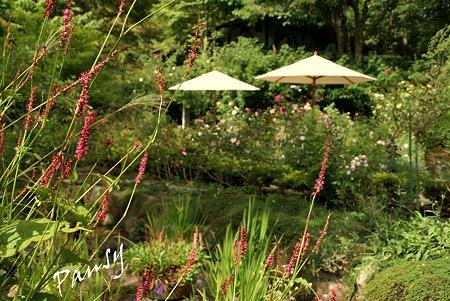 花と池のある風景・・